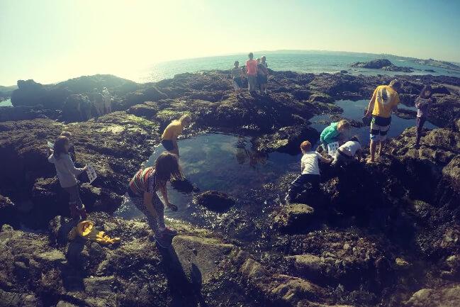 1 Rockpooling Cornwall Kids